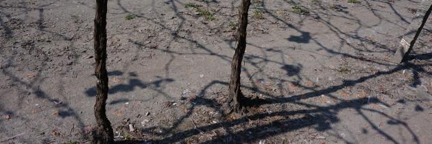 土壤(上)-20140306